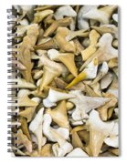 Sharks Teeth Spiral Notebook