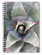 Sharply Circular Spiral Notebook