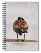 Shawnee Park Geese Spiral Notebook
