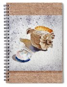 She Sells Sea Shells Decorative Collage Spiral Notebook