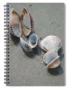 She Sells Sea Shells Spiral Notebook