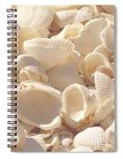 She Sells Seashells Spiral Notebook