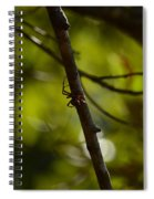 She Waits In Darkness Spiral Notebook