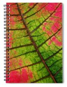 Shed Foliage Spiral Notebook