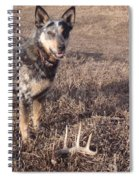 Shed Hunting Spiral Notebook