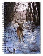Shedding Time Spiral Notebook