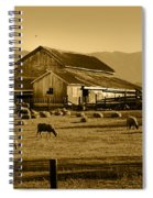 Sheep And Barn Spiral Notebook