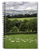 Sheep And More Sheep Spiral Notebook