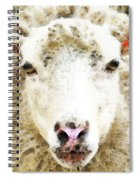 Sheep Art - White Sheep Spiral Notebook