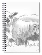 Sheep Drawing Spiral Notebook