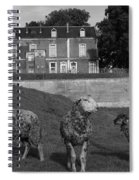 Sheep In French Landscape Spiral Notebook