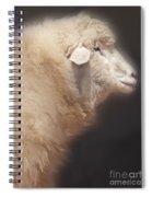 Sheep Spiral Notebook
