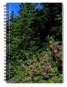 Sheep Laurel Shrub Spiral Notebook
