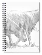 Sheep Walking Spiral Notebook