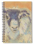 Sheep With Horns Spiral Notebook