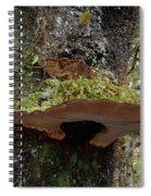 Shelf Mushroom With Moss Spiral Notebook
