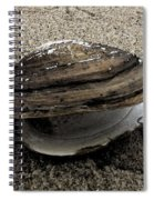 Shell  Abstract Spiral Notebook