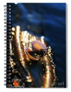 Shell By The River Spiral Notebook