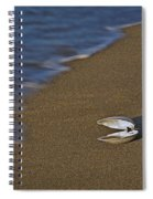 Shell By The Shore Spiral Notebook