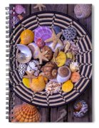 Shell Collecting Spiral Notebook