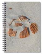 Shell Jigsaw Spiral Notebook