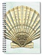 Shell Treasure-a Spiral Notebook