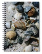Shells Spiral Notebook