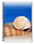 Shells In Sand Spiral Notebook