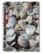 Shells On Treasure Island Spiral Notebook