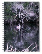 Shelter Beneath The Roots Spiral Notebook