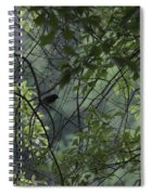 Sheltered From The Rain Spiral Notebook