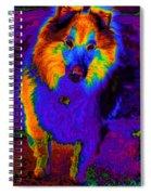 Sheltie Pop Art Spiral Notebook