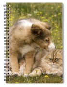 Sheltie Puppy And Persian Cat Spiral Notebook