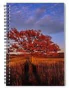 Shenandoah Tree Spiral Notebook
