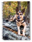 Shepherd In The Fall Spiral Notebook