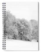 Sherman's Wood Spiral Notebook