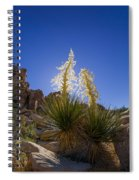 Shields Spiral Notebook