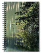 Shimmering Pine Spiral Notebook