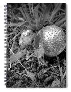 Shiny Mushroom Spiral Notebook