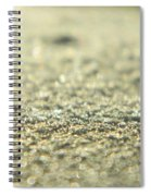 Shiny Snow Spiral Notebook