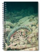 Ship Wreck And Motorbikes Spiral Notebook