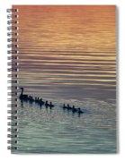 Shipshewana Lake Evening Spiral Notebook