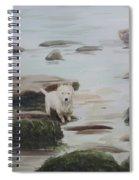 Shirley's Dog Spiral Notebook