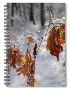 Shivering Oak Leaves Spiral Notebook
