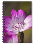 Shocking Pink Chenille Spiral Notebook