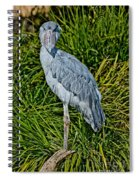 Shoebill Stork Spiral Notebook