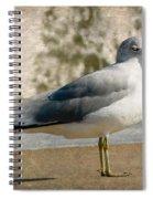 Shore Bird Spiral Notebook