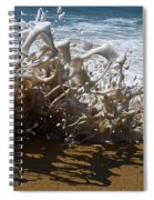 Shorebreak - The Wedge Spiral Notebook
