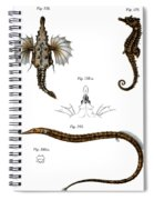 Short Dragonfish Spiral Notebook