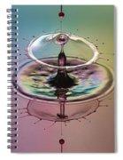 Shot Thru The Heart Spiral Notebook